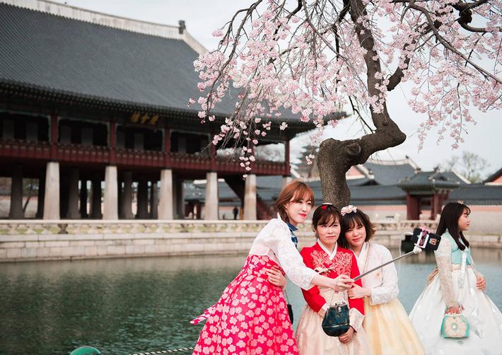 Seoul – Everland – Nami – Hoa Anh Đào – Bảo tàng 3D, Đá Tuyết