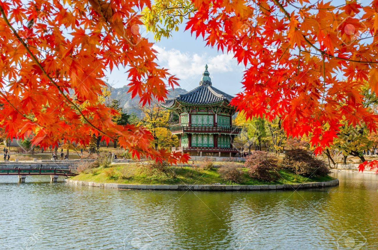 Mùa Thu Xứ Hàn: Hà Nội – Seoul – Nami – Everland 5N4Đ