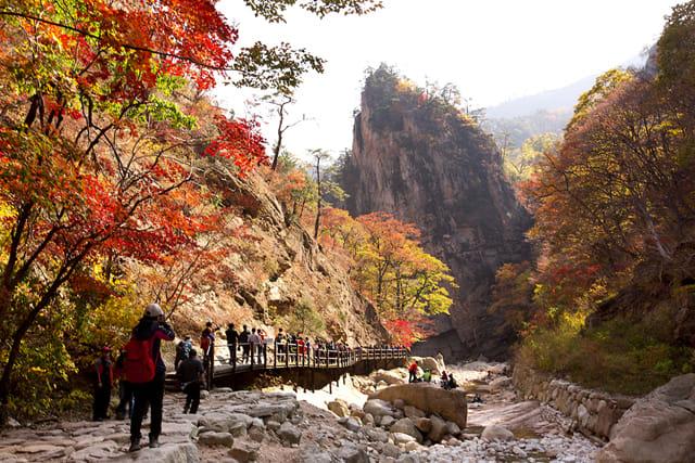 SEORAK – EVERLAND – SEOUL – JEJU 6N5Đ